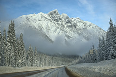 White giant (Varvara_R) Tags: nature winter weather sunnyweather mountain mountains mountainscape mountainrange cloud sky bluesky travel traveldestination road roadscape transcanadahwy show frost britishcolumbia geotagged coth coth5