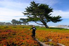 Wenji at Pacific Grove (Ping & Wenji) Tags: pacificgrove california