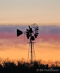January 3, 2020 - Windmill at sunrise. (Bill Hutchinson)