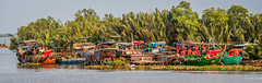 2019 - Vietnam-Avalon Siem Reap - 14 - River Cruise - Soài Rap River Boats (Ted's photos - Returns Early February) Tags: 2019 avalonwaterways cropped mekongriver nikon nikond750 nikonfx tedmcgrath tedsphotos vietnam vignetting wideangle widescreen boats soàirapriver soàirapvietnam vietnamriver soàirapboats riverboats riverwater