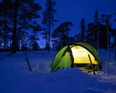 Drevfjället Vinter II (Gustaf_E) Tags: camp dalarna drevfjället forest kväll landscape landskap naturreservat skog sverige sweden tent tält vinter winter woods