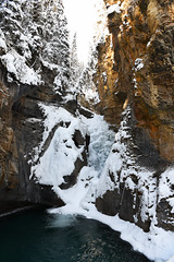 Anyone for a Cool Dip? (Anthony Mark Images) Tags: lowerfalls frozenwaterfall poolofwater canyonwalls snowcoveredtrees snow ice johnstoncanyon banffnationalpark alberta canada winter winterlandscape water cold freezing brrrrrrr beautiful hike pretty nikon d850 flickrclickx