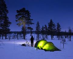 Drevfjället Vinter I (Gustaf_E) Tags: camp dalarna drevfjället forest kväll landscape landskap naturreservat skog sverige sweden tent tält vinter winter woods