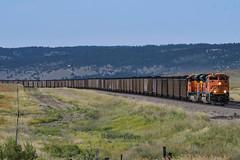 Dragging coal. (Shane692) Tags: bnsf burligrton bn freight ge coal railroad america emd sd70ace buttesub ace burlington nikond500