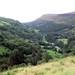 Glenarif  Forest Park