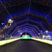 08 Lighted Walkway IMG_5256 Lights of the World PHX AZ