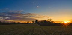 Am Feld geht die Sonne unter (KaAuenwasser) Tags: sonne sonnenuntergang sonnenstern licht schatten iffezheim feld acker baum bäume landschaft natur himmel wolken strahlen farbe bunt farben ort platz stelle gebiet gegend 2020 januar winter
