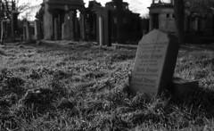 zentralfriedhof_old_jewish_grave (chris_k.) Tags: vienna wien austria österreich friedhof jüdisch cemetery zentralfriedhof schwarz weiss