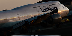 D-ABYM (M.R. Aviation Photography) Tags: boeing 747830 dabym lufthansa lax los angeles united states california aviation aviacion airplane plane aircraft avion sony a7 a6 z7 d850 d750 d650 d7200 photo photography foto fotografia pic picture canon eos pentax sigma nikon b737 b747 b777 b787 a320 a330 a340 a380 alpha alpha7