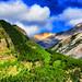 Between Spectral Peak and Mount Aylmer