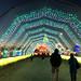 05 Walkway IMG_5225 Lights of the World PHX AZ