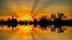 Sunset Reflections (Ken Mickel) Tags: arizona clouds cloudscape colors desert fineart kenmickelphotography landscape outdoors papagopark phoenix plants reflections sky sunrays nature photography silhouette silhouettes unitedstatesofamerica