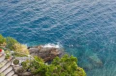 Swimmers, Cinque Terre, Italy (Allison Kendall) Tags: italy liguria vernazza travel sea cliff water swimming swim swimmers cinque blue coast italian aqua terre