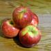 Apples (Honey Crisp)