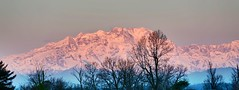 pink mountains (Jaws300) Tags: morning pink trees winter sky italy mountain snow milan mountains alps tree sunrise canon eos italian italia snowy milano south hill hills snowcapped southern 5d canon5d alpen pinksky southernalps risingsun italianalps fireinthesky wintermornings mxp wintermorning malpensa mountainrange snowcap pinkmountain milanmalpensa pinkmountains ef28300mm milanmalpensainternationalairport milanmalpensaairport