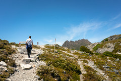 The Overland Track towards Cradle Mountain