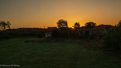 sunrise .)1917/5669-1 (dironzafrancesco) Tags: landscape landschaft nature himmel outdoor imfreien natur clouds sonyilce7r2 baum travel sony sonnenaufgang sunrise spain sky wolken sonyfe1635mmf4zaoss castrillón asturien spanien