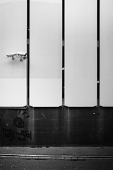they watch you (gato-gato-gato) Tags: leica leicammonochrom leicasummiluxm35mmf14 mmonochrom messsucher monochrom schweiz strasse street streetphotographer streetphotography suisse svizzera switzerland zueri zuerich zurigo black digital flickr gatogatogato gatogatogatoch rangefinder streetphoto streetpic streettogs tobiasgaulkech white wwwgatogatogatoch zürich kantonzürich manualfocus manuellerfokus manualmode schwarz weiss bw monochrome blanc noir strase onthestreets mensch person human pedestrian fussgänger fusgänger passant sviss zwitserland isviçre zurich fuji fujifilm fujix x100 x100p pointandshoot autofocus