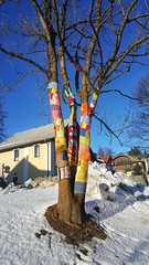 When the trees wearing clothes 💕🌳 (My colourful world️) Tags: semmering mountains austria winter tree colorful beautiful blue sky clothes snow sunny day