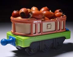 "Truckload of rosehips (metamodule) Tags: ""themacrogroup"" chuggington"