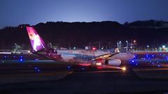 In the Wings (tsuna72) Tags: japan fukuoka fukuokaairport fuk rjff jetaircraft jetairliner jet aircraft airliner airbus a330200 a332 332 a330 330 n388ha hawaiianairlines aviation 日本 福岡 福岡空港 pentaxk30 pentax k30