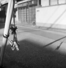 IMG_20200103_0011 (Dinasty_Oomae) Tags: ricohflexnewdia ricohflex リコーフレックスニューダイヤ リコーフレックス ricoh リコー 千葉県 千葉 chiba 船橋市 船橋 funabashi 白黒写真 白黒 monochrome blackandwhite blackwhite bw outdoor