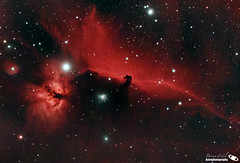 Horsehead and Flame Nebulae in Orion (bfriel0120) Tags: astrophotography horseheadnebula orion deepsky