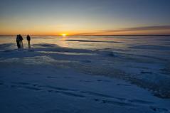 Joensuu - Finland (Sami Niemeläinen (instagram: santtujns)) Tags: joensuu suomi finland talvi winter lumi snow pohjoiskarjala north karelia kuhasalo pyhäselkä lake frozen ice jää järvi sunset auringonlasku