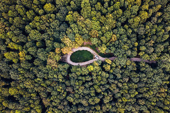 Turning Point (The Hobbit Hole) Tags: viennawoods strasse woods austria vienna wienerwald mavicpro summer drone road wienmalanders mavic car fromabove colors green österreich droneshots