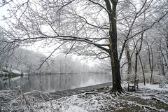Happy Bench Monday! (JMS2) Tags: bench monday park snow winter forest lake pond scenic snowing outdoor