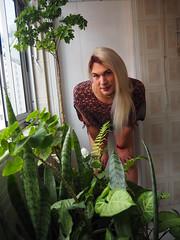 2019.12-09 (SamyOliver) Tags: samyoliver samanthaoliver samycd samantha samyoliverbr crossdresser crossdress crossdressing transvestite transformista tranny travesti transgender transgenero queer lgbtq genderqueer boytogirl brazil