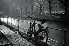 winter light@Kö-Graben, Düsseldorf 20 (Amselchen) Tags: sony zeiss carlzeiss sonnart1855 sonnar5518za sonyilce7rm2 fe55mmf18za mono monochrome lightandshadow light shadow blackandwhite blur bokeh dof depthoffield sel55f18z bicycle twop