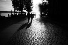 Hand in hand (Ricoh GR1) (stefankamert) Tags: analog analogie film grain sun shadows people light noir noiretblanc blackandwhite blackwhite bw stefankamert überlingen lakeconstance bodensee ricoh gr gr1 ricohgr1 kodak trix trees 122019