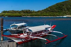 Puerto Galera-37 (walterkolkma) Tags: philippines mindoro island beach corals puertogalera whitebeach aninuan tamaraw banca outrigger boat ship sunny skies palm kolkma sony a7iii