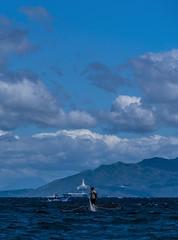 Puerto Galera-147 (walterkolkma) Tags: philippines mindoro island beach corals puertogalera whitebeach aninuan tamaraw banca outrigger boat ship sunny skies palm kolkma sony a7iii