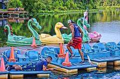 Lake Kittamaqundi (creepingvinesimages) Tags: hbm bench lake water paddleboats lakekittamaqundi maryland people crew colors refections pse2020 topaz
