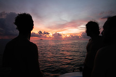Surf Trip to Maldive Islands (aitorlamadrid) Tags: sun sea travel summer panoramic nature dark palm coast ocean child outdoor woman tropical leisure real palmtree maldives sunset young parent sibling silhouette family unrecognizable little beach panorama person together authentic brother banner daughter people evening sunlight copyspace vacation sand happy maldive male surf surfers rose clouds 30s 40s sky