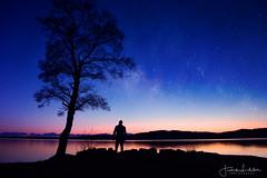 Under The Stars (Fredrik Lindedal) Tags: earth landscape light lake lights lindedal stars tree sweden sverige sky skyline ambient space