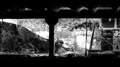 Oldenburg - (street: Melkbrink) 1013th picture / Graffiti, street art (tusuwe.groeber) Tags: projekt project lovelycity graffiti germany deutschland lowersaxony oldenburg city streetart niedersachsen farbig farben favorit colourful colour sony sonyphotographing nex7 bunt red rot art gebäude building gelb grün green yellow konzept concept wall wand halloffame wandgestaltung lager lagerhalle hall halle melkbrink bw sw black white weis schwarz blanco negro