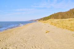 025393a  Do You Like Long Walks? I'm Sure You Would Love One Here! (David G. Hoffman) Tags: lake lakeshore lakemichigan beach beachgrass vanishingpoint dunes woods waves clouds