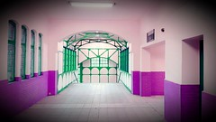 gwb | think pink (stoha) Tags: berlin stoha gwb soh deutschland pink wuhlheide sbahnhof sbahnhofwuhlheide sbahn guessedberlin gwbgpeole koepenick berlinkoepenick