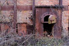 Limberg (Harald Reichmann) Tags: limberg ruine ofen geschichte kieselgur