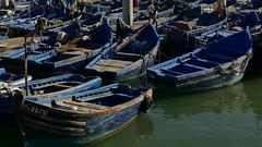 Boot an Boot ........ (marionkaminski) Tags: marokko morokko maroc hafenstadt hafen port puerto boote blaueboote boats bateaux essaouira marruecos porto
