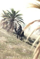 """Harbinger"" (L1netty) Tags: assassinscreed assassinscreedorigins ubisoft ubisoftmontreal pc game gaming pcgaming videogame reshade screenshot virtual digital srwe 6k character bayek bayekofsiwa man male people rider sky trees grass dof color outdoor"