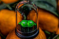 2 peas in a pod HMM (Dotsy McCurly) Tags: macromondays contained hmm happymacromonday pea pod handmade clay smile smiling toyphotography dome container macro canoneos80d efs35mmf28macroisstm