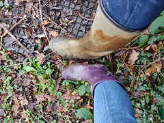 Purple short hunter wellies and le chameau hiking (Felix Boots) Tags: wellies boots rubber wellington women girl woman wearing mud muddy