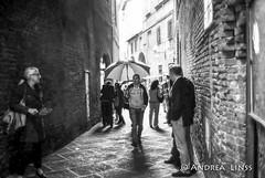 siena ... (andrealinss) Tags: italia italien italy siena toscana toskana tuscany analog film leicam6 leica schwarzweiss street streetphotography streetfotografie bw blackandwhite andrealinss 35mm