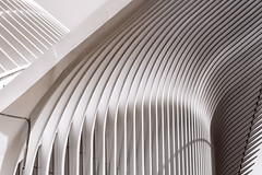 Oculus Manhattan (Pat Kelleher) Tags: highkey architecture nyc manhattan oculus calatrava