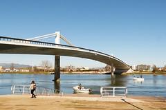 Sant Jaume d'Enveja (22) (calafellvalo) Tags: terresdelebre deltadelebro arrozales ebro ebre santjaumedenveja amposta santcarlesdelaràpita river río bridge flamencos aves rice calafellvalo