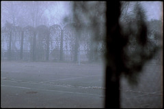 699 (konophotography) Tags: konophotography konophoto film filmisnotdead filmphotography analog analogue nature buyfilmnotmegapixels ishootfilm fog foggy morning ukraine home 2018 autumn